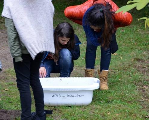 Foto Klosterschule-Projektunterricht: Wasserprojekt